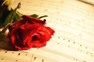 Stock Photo of serenade