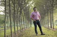 Stock Photo of A man standing in an avenue of trees looking up
