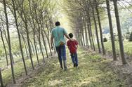 Stock Photo of A man and boy walking down an avenue of trees