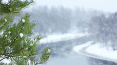 Calm winter scene. Snow falling slowly with space for text. Stock Footage