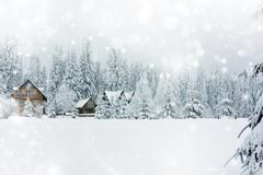 Cottage in romanian mountains Stock Illustration