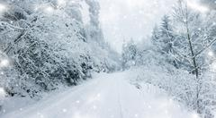 Winter road in the mountains Stock Illustration