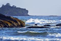 Rocky pacific ocean beach in olympic peninsula Stock Photos