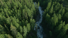 Flight over forest and river in mountains Altai, Siberia (CineStyle Profile) Stock Footage