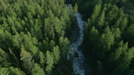 Stock Video Footage of flight over forest and river in mountains Altai, Siberia (CineStyle Profile)