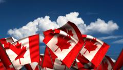 Waving Canadian Flags Stock Footage