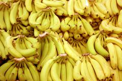 Fresh Bananas - stock photo