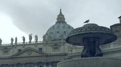 view of St. Peter with a fountain and Seagull - stock footage