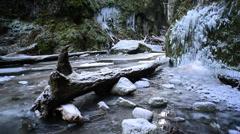 Oneonta Gorge Frozen Stock Footage