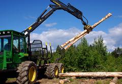 wood fellers` contest - stock photo