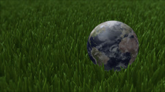 Earth na grama Stock Footage
