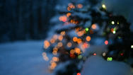 Stock Video Footage of Real Christmas Tree Lights in the Country with Snow