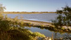 Landscape of camargue Stock Footage