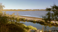 Stock Video Footage of landscape of camargue