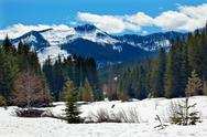 Stock Photo of gold creek mount hyak spring snow snoqualme pass washington