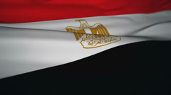 Waving Flag Animation loop: Egypt Stock Footage