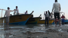 Bringing in freshly caught fish, at a beach on the Persian Gulf, Iran Stock Footage