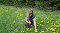 Woman pick dandelion sowthistle flowers and walk in meadow Stock Footage