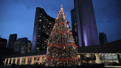 Toronto City Christmas Tree - stock footage