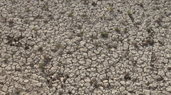 Drought, dry cracked earth, pattern Stock Footage