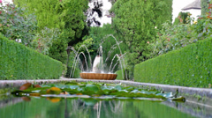 Small fountain in the pond  in summer park Stock Footage