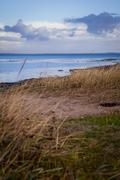 Beautiful landscape in autum baltic see green field blue sky Stock Photos