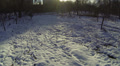 Snow in park and the sun.  Slow Aerial Footage