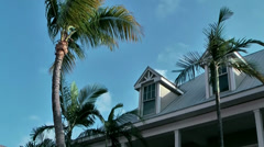 KeyWest 100HD, a Roof with oriel window behind Palm Trees Stock Footage
