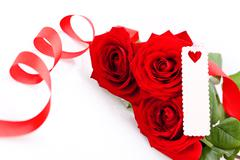 Valentines gift of beautiful red roses Stock Photos