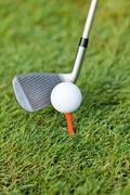 Golf ball and iron on green grass detail macro summer outdoor Stock Photos