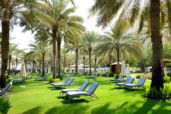 sunbeds on the green lawn and palm tree shadows in luxury hotel, dubai, uae - stock photo