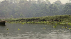 Stock Video Footage of River boat safari  in Chitwan National Park