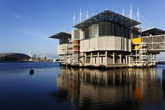 Portugali, Lissabon, Parque das Nações, katseleminen Oceanariosta de Lisboa Kuvituskuvat
