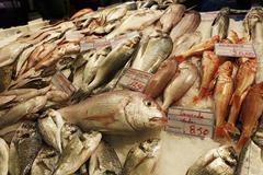 Stock Photo of Portugal, Lisboa, Bica, Mercado da Ribeira Nova, view of fish stand