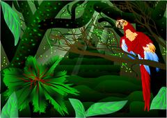 Amazon forest Stock Illustration