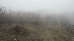 Scary Hill Foggy Forest 5 Stock Footage