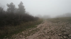 Scary Hill Foggy Forest 7 Stock Footage