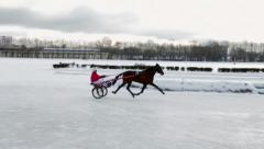 Horserace Stock Footage