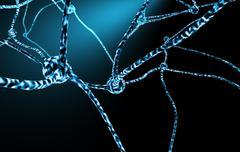 Hermosoluja ja hermosoluverkostossa Piirros