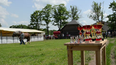 Winner cups and farmer man master show saddle heavy horse Stock Footage