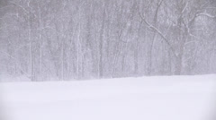 Snow Storm Stock Footage