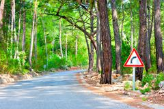 road in the woods and the sign of rotation - stock photo