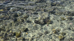 The reef in luxury hotel, Sharm el Sheikh, Egypt Stock Footage