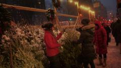 Christmas Tree Sidewalk Vendor in Upper Manhattan - stock footage