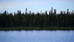 Rapid Pan Right Follows Shore of Gentle Lake Stock Footage