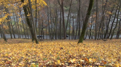 Colorful hill covered with autumn leaves and cars drive Stock Footage