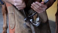 equine farrier at work - stock footage