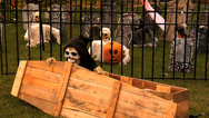 Stock Video Footage of Halloween Grim Reaper MS