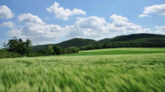 Countryside with cereal field Stock Footage