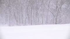 Winter Scenes Snow Storm with Truck Stock Footage